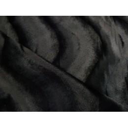 5499/69 CAVALLINO NERO